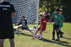 U10 Granite Savings Bank Fall 2013 Keeper on the Move